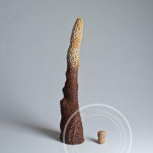 Искусственный коралл сталактит