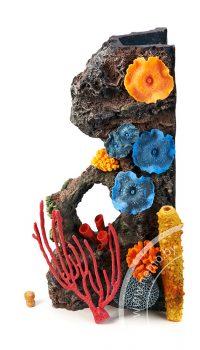 Коралловый риф для аквариума на просвет