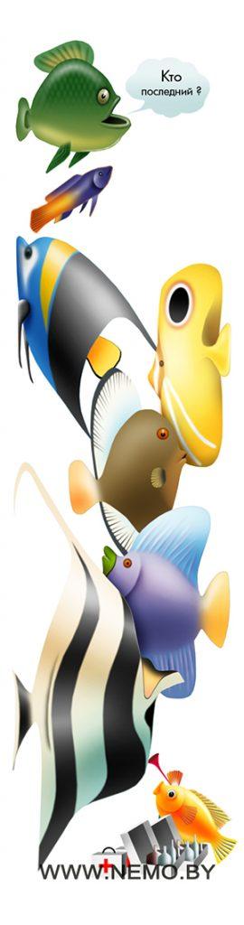 Рыбка доктор