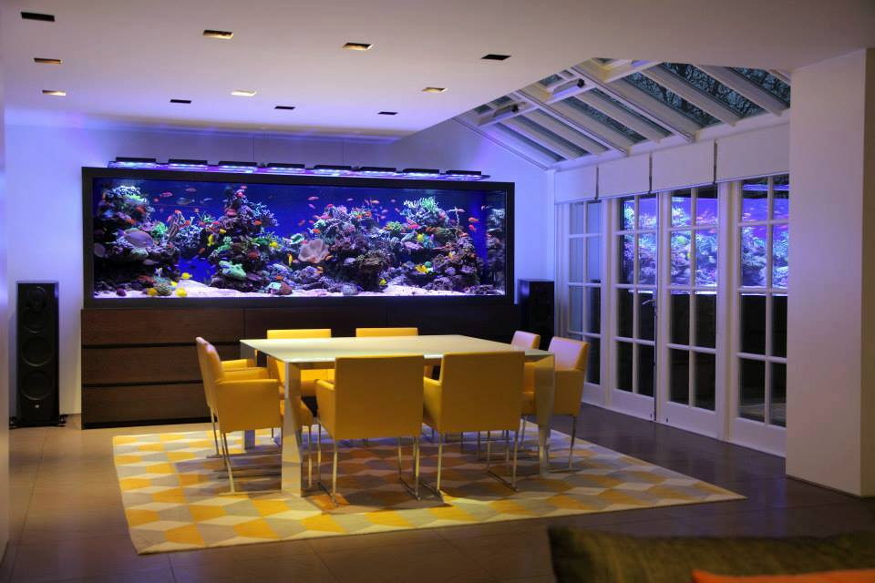 Самые дорогие аквариумы знаменитостей