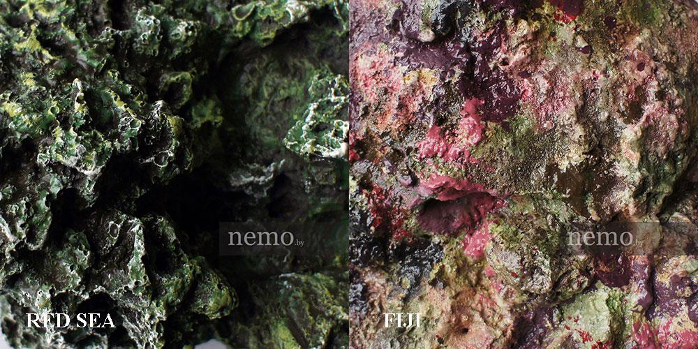 Выбор цвета рифа для аквариума