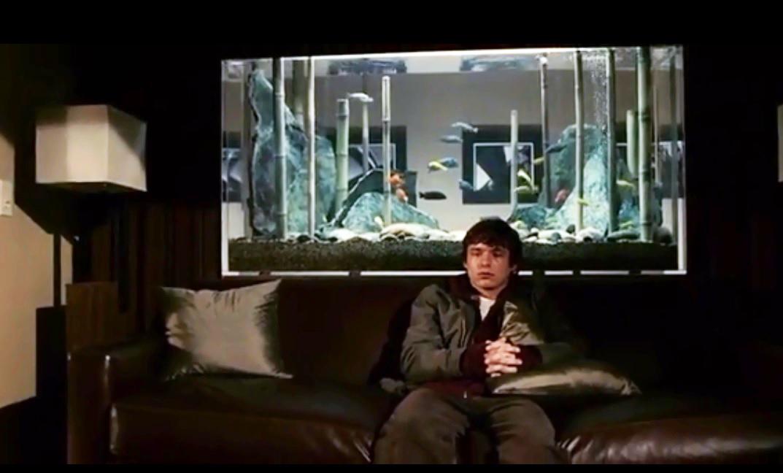 Аквариум на просвет в кино