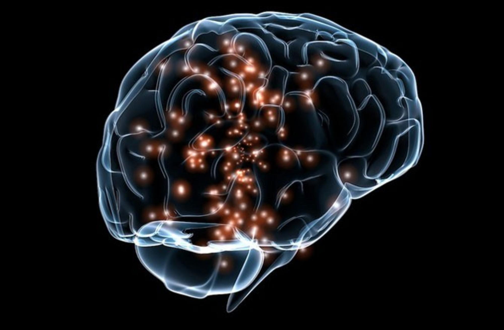 Исследование на предмет воздействия аквариумной среды на психологическое и физиологическое состояние индивида