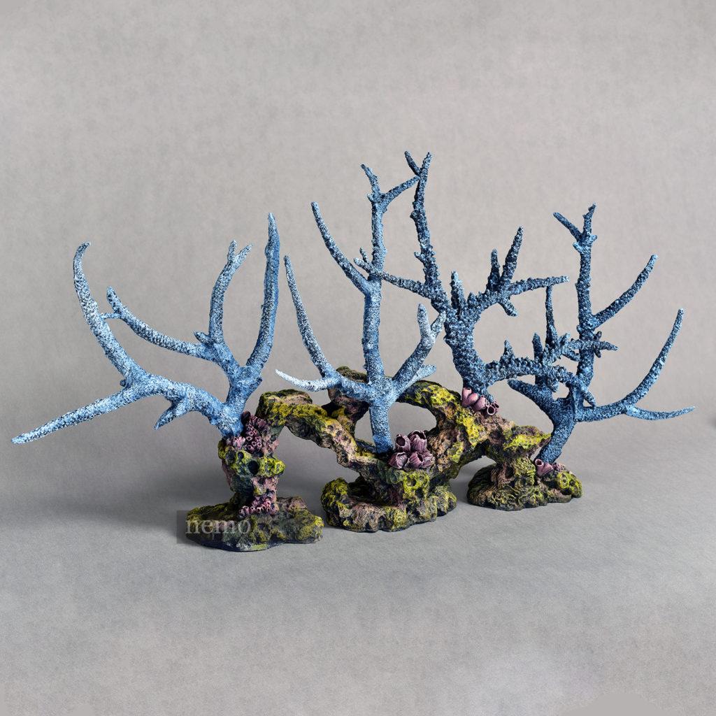 Риф с стагхорнами