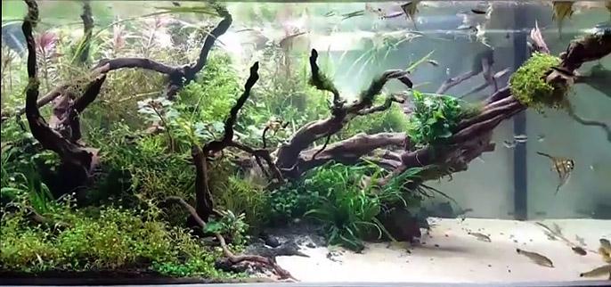 Песок в аквариуме