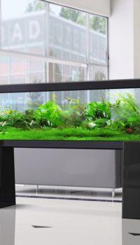Модерн дизайн аквариума в акриловом камне
