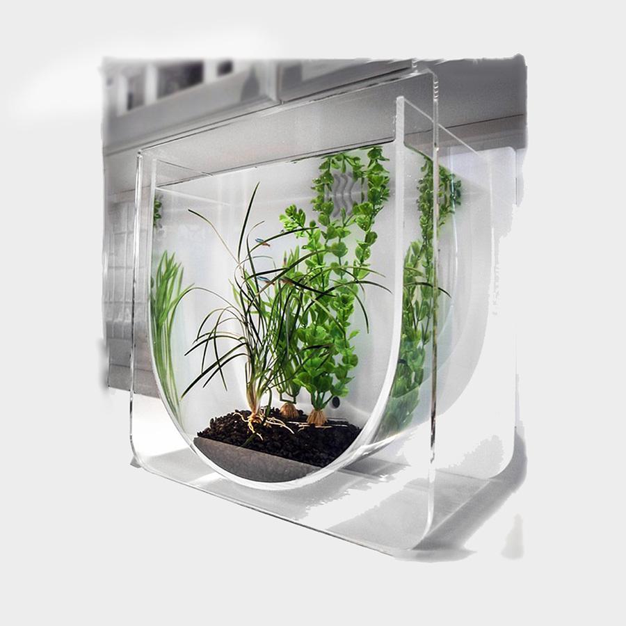 Современный аквариум